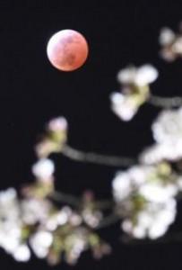 20150404-00001953-kyodom-000-1-view.jpg
